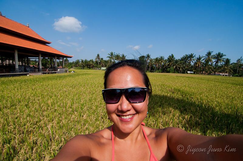 Bali-Rice-Paddie-Indonesia-8910.jpg