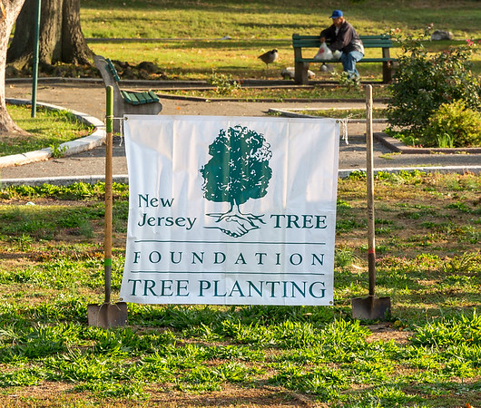 NJ Tree Foundation in Passaic