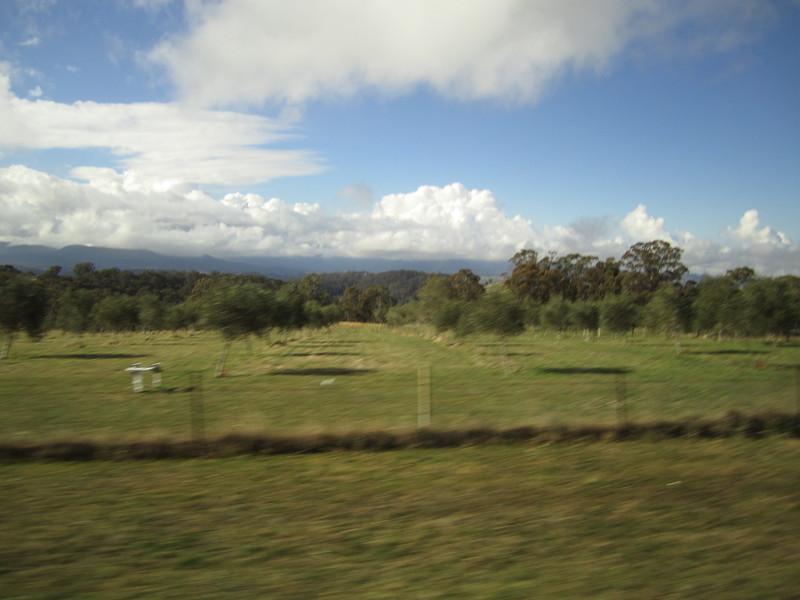Sydney - Blue Mountains-129.JPG