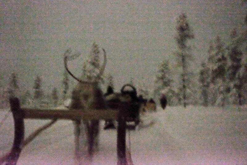 Finland_160117_121.jpg