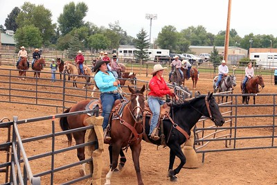 Ranch Sorting 10 Head sort
