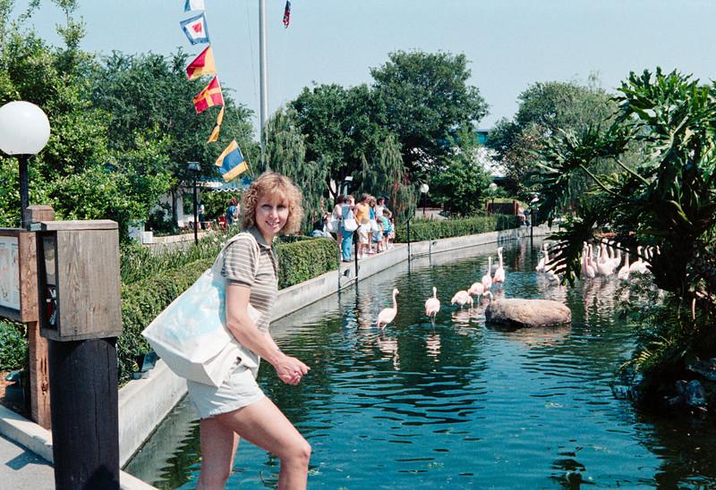 Epcot and Sea World 1988