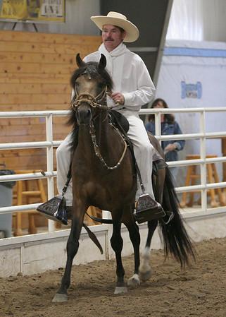 Class 17, Stallions Bozal