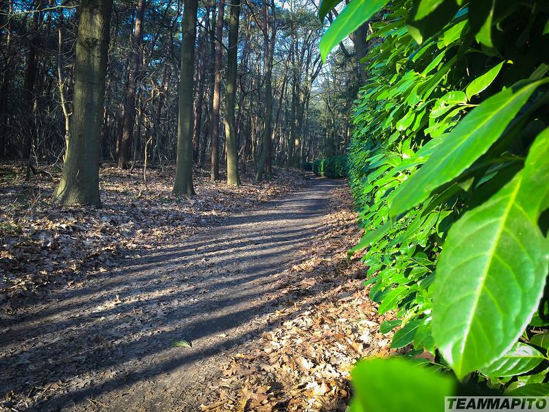 Location_scout_TEAM_MAPITO_Subaru_Day3-16.jpg