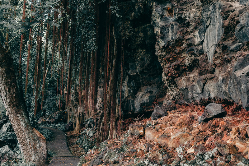 Hawaii20-51.jpg
