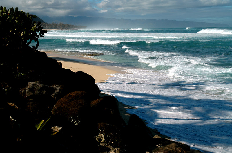 Winter waves crash high onto the beach on the North Shore  North Shore  Oahu  Hawaii