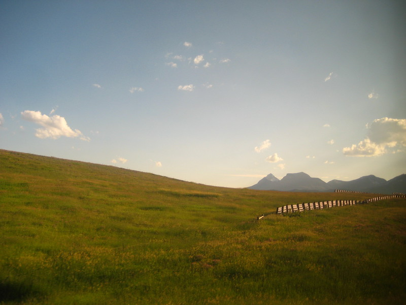 2008-07-24-YOCAMA-Montana_2685.jpg