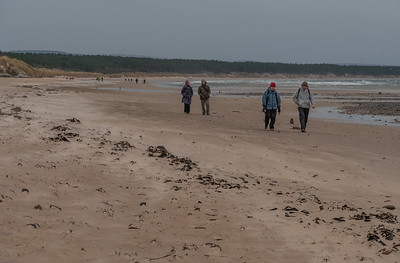 Findhorn-Burghead Boxing Day