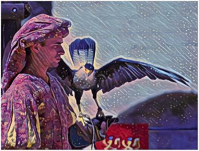 Birds of prey - Falconers Fantasy