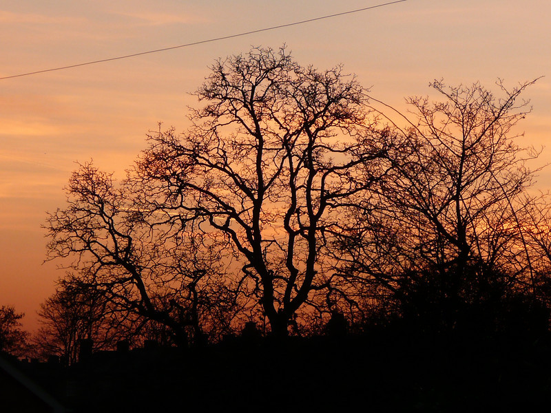 Sunset over Warners Park