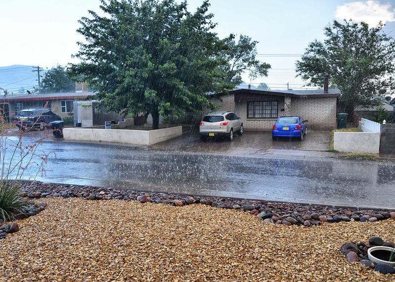 NEA_0250-7x5-Raining in NM.jpg
