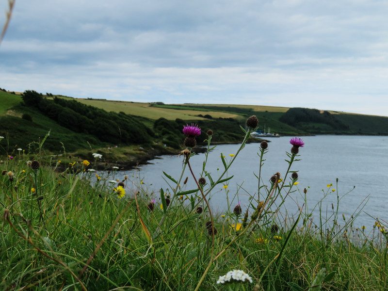 Scotland-2016_319.jpg