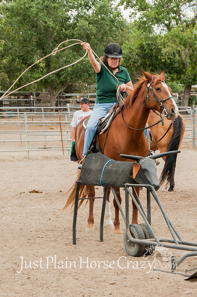 Hibbitts Roping Clinic