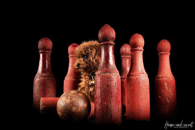 Biby Quilles 2 HD.jpg