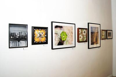 Modest Fly Art Studio Exhibit