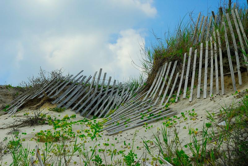 Sea Fence.jpg