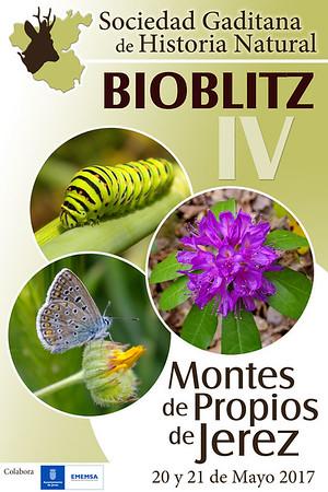 Bioblitz 2017 Montes de Propios Jerez (PN Los Alcornocales)