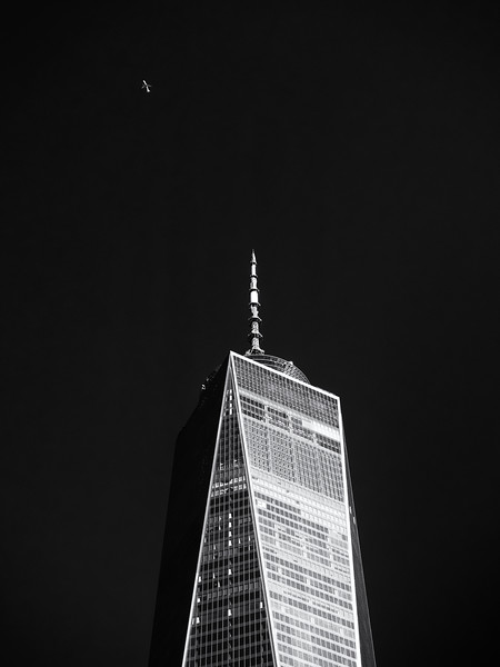 World Trade Center and Plane
