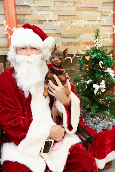 Santa Photo - MAK GPS Rescue Fundraiser