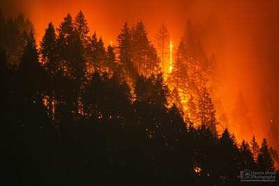 Eagle Creek Wildfire