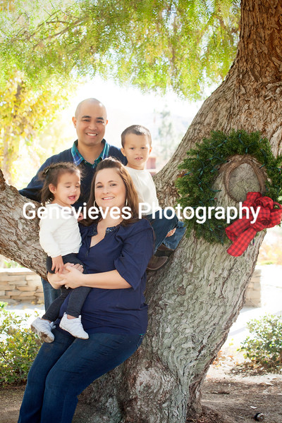 Ramons Holiday Session