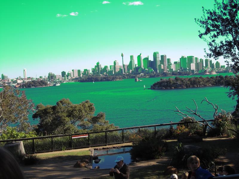 Sydney - Sydeny Zoo-123.JPG