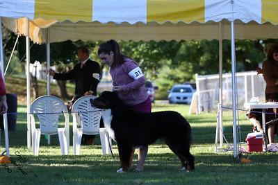 Sweeps 12-15mo Dog BMDCW 2010