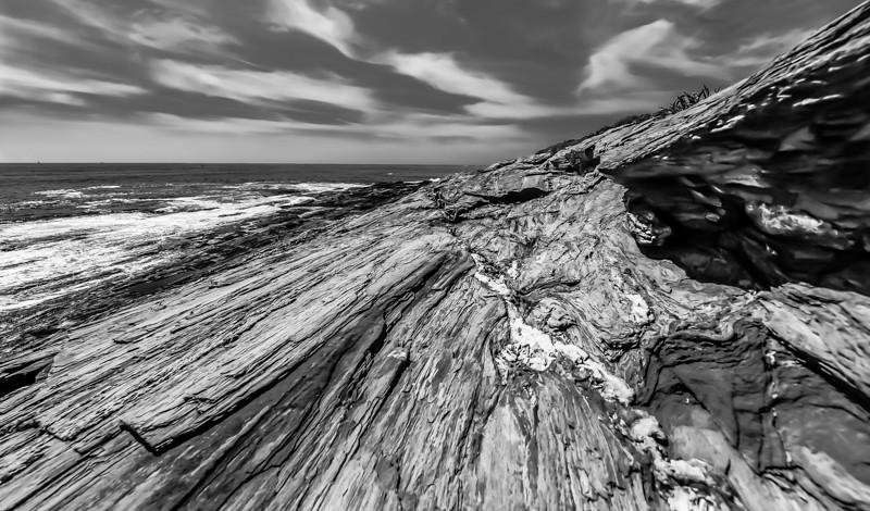 Maine Coast 126