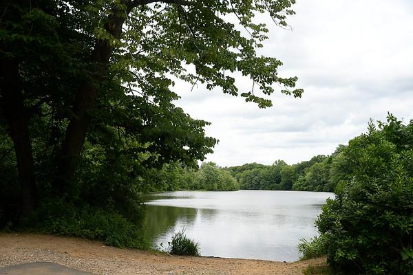 6/27/2018 MIke Orazzi | Staff Birge Pond in Bristol.