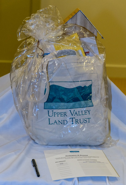 UVLT Silent Auction-_8504338.jpg