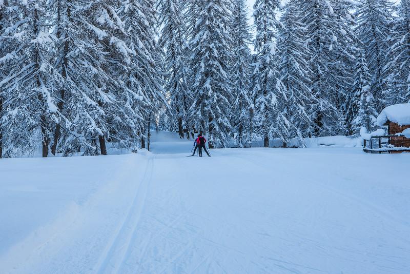 Rheinwald-Winter-D-Aebli-054.jpg