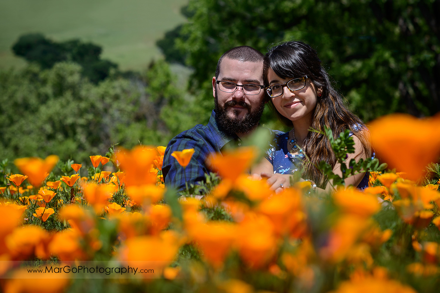 man in blue shirt and woman in blue dress sitting among orange poppies during engagement session at Sunol Regional Wilderness