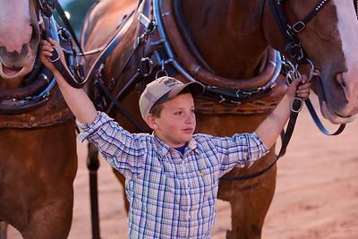 Horse pull in South Jordan, UT June 18, 2010