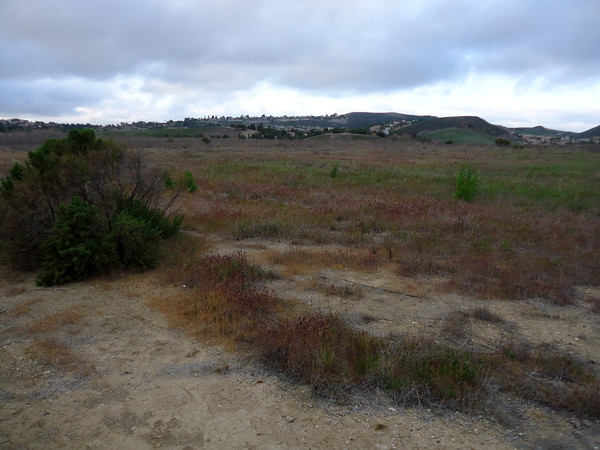 2012-02-29 - Conejo Recreation and Parks Lang Ranch Meeting