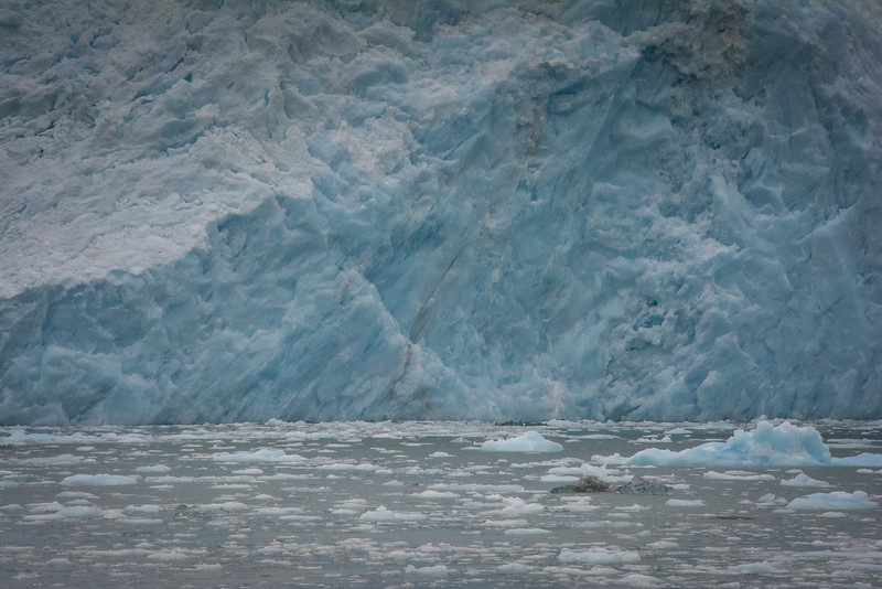 Kenai-Fjords-136.jpg