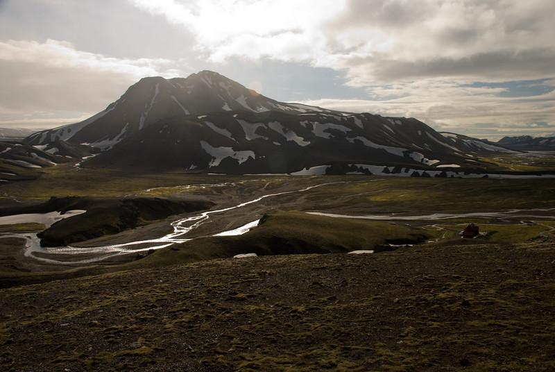 Meyjarstrútur eða Strútur