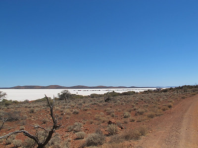 Salt 2013 Lake Gairdner