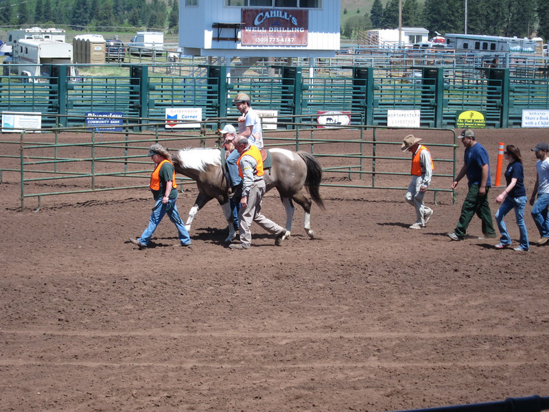Demonstration of a pack out using horses.