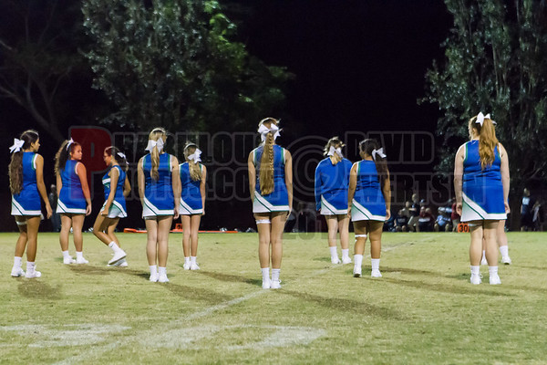 Cheer Only..
