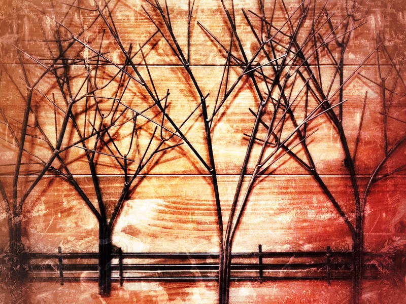 Tin trees