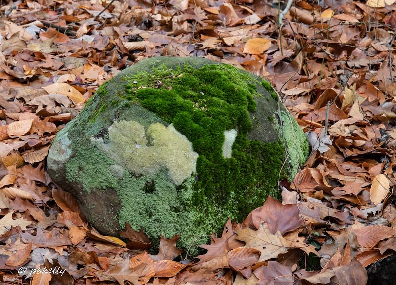 rocks 111718-1.jpg