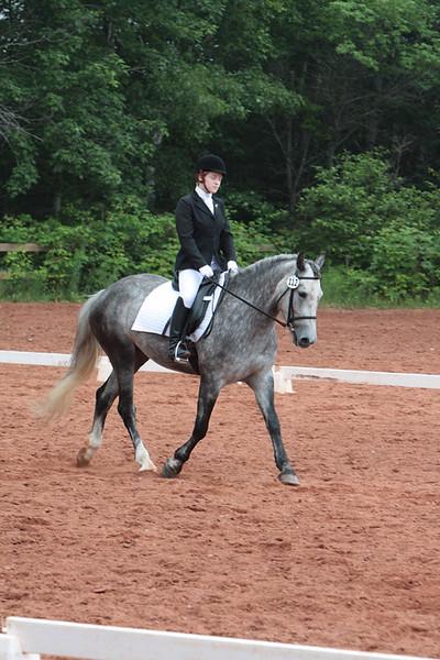 Central Nova Horse and Pony