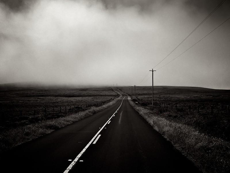 BW_foggyroad_L.jpg