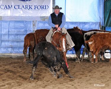 BC 2017 $500 RANCH HORSE