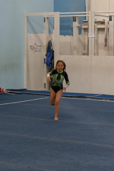 Brianna Gymnastics-0502.jpg