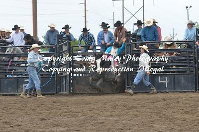 05-31-14 Saddle Bronc