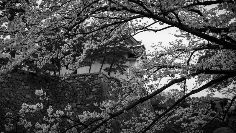 Nagoya 310313 10 .jpg