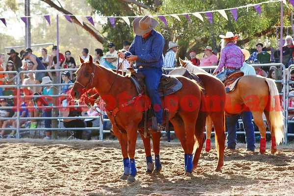 2015 Rodeo