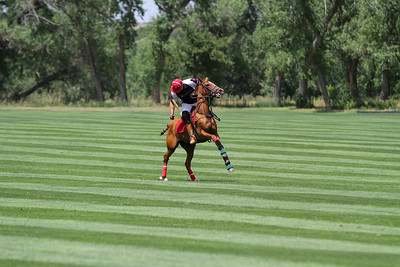 Denver Polo Club July 6