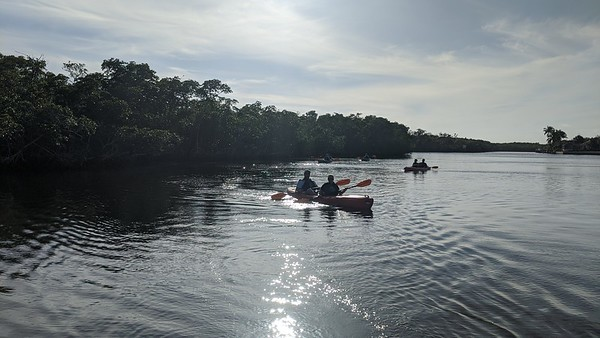 2/18 1:30pm Manatees & Mangroves
